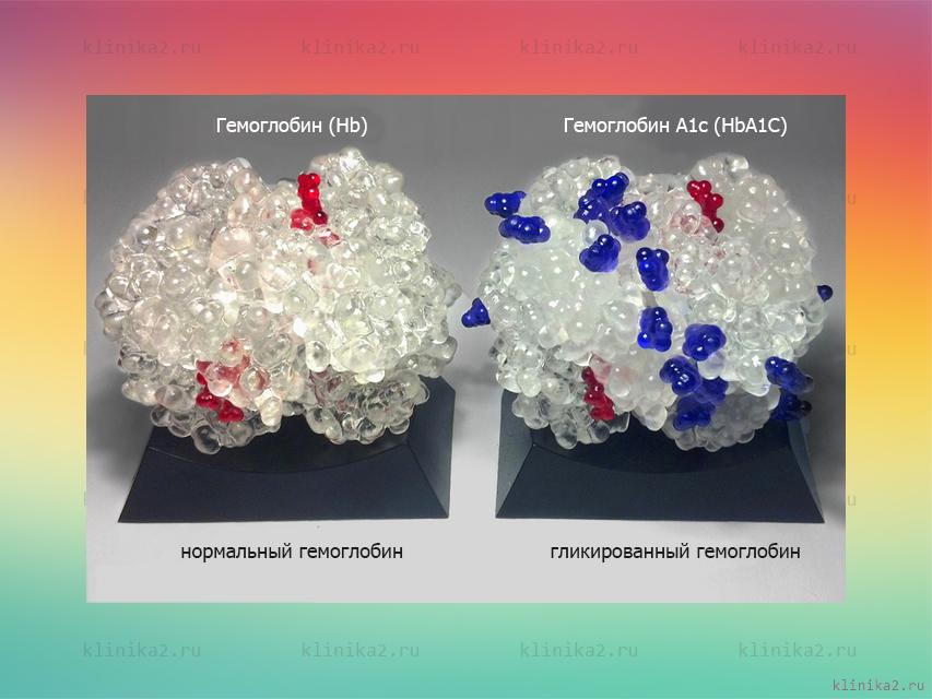Гемоглобин и гликированный гемоглобин