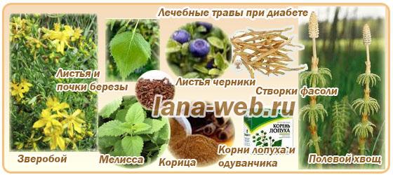 лечебные травы при диабете