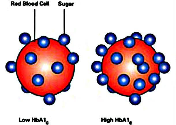 гликолизированный гемоглобин норма