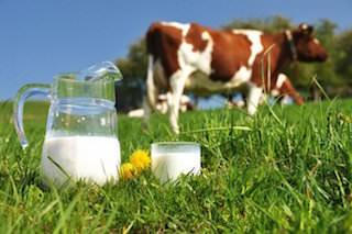 молоко при диабете