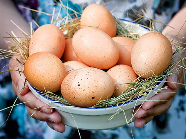 Яйца домашнии от СД