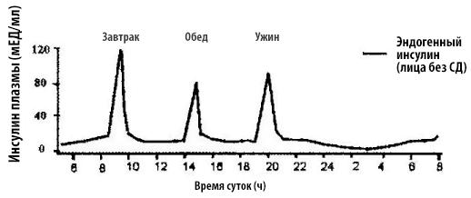 Секреция инсулина у человека