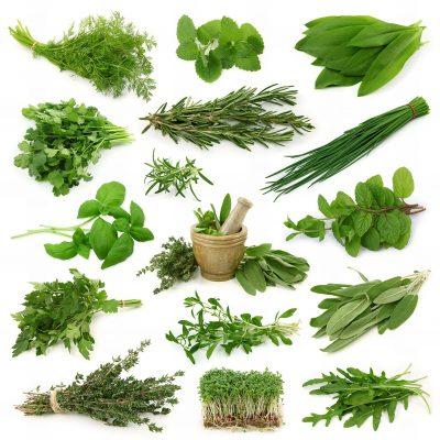 Полезные овощи для диабетика